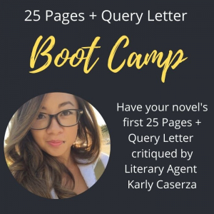 25 Pages + Query Letter Literary Agent Boot Camp