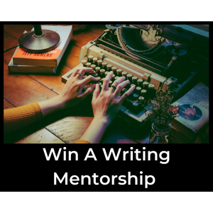 Win a writing mentorship from Ann Brady