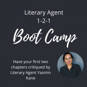 Literary Agent 1-2-1 Boot Camp